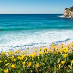 SPRING SELLING SEASON IS HERE, GOLD COAST!